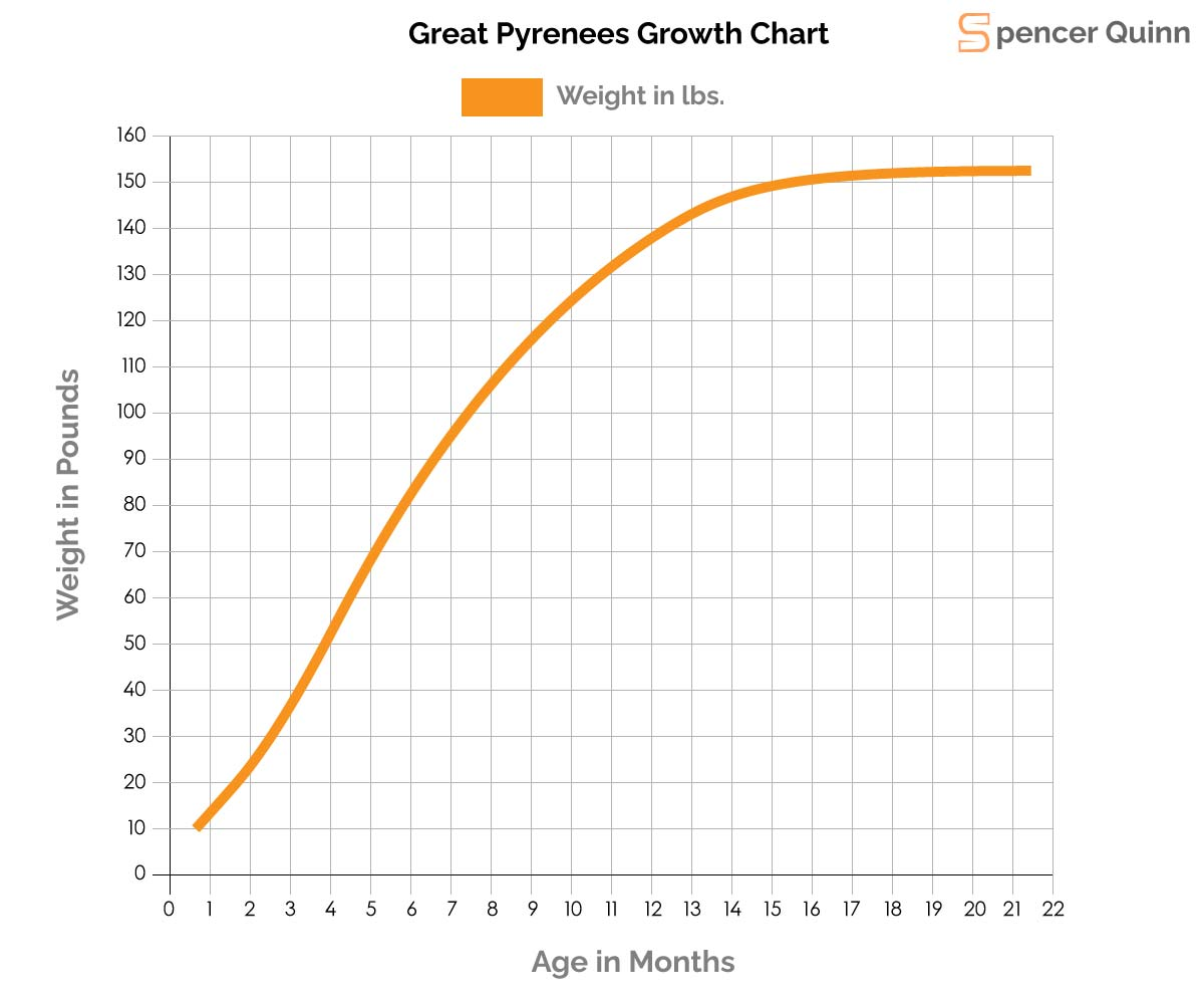 Great Pyrenees Growth Chart
